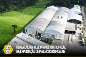 Koala Energy, il produttore di pellet BR002 in Brasile
